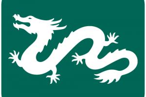 Dragon Vietnam Fund Management