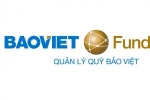 quản lý quỹ Bảo Việt